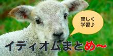 【楽しいイディオムの覚え方】日本語でも似たことわざがある表現4つ